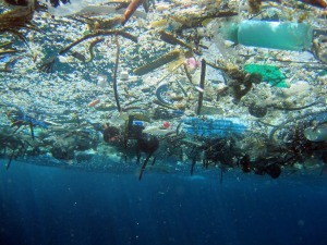 Marine debris from underwater