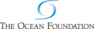 ocean foundation