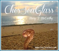 Chesseaglass logo
